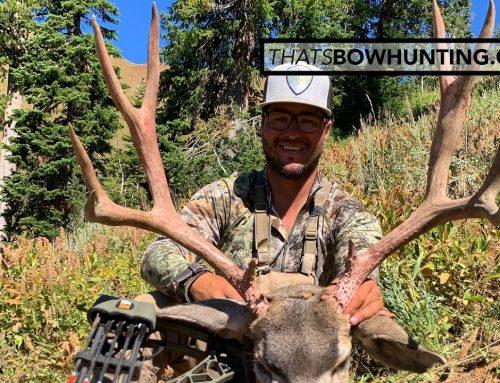 2 Bucks in 5 days in the high country of Wyoming Archery mule deer