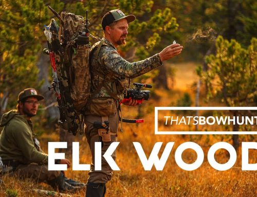 Hunting Quiet Elk in New Wyoming Hunting Spot